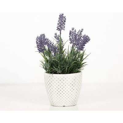 Artificial Flowering Plant in Pot - Wayfair