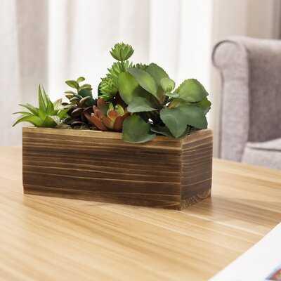 3'' Artificial Succulent in Planter - Wayfair