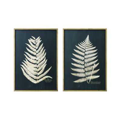 Framed Fern Leaf Prints, Set of 2 - Roam Common