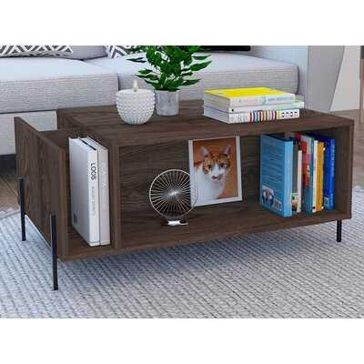 Riya Coffee Table with Storage - Wayfair