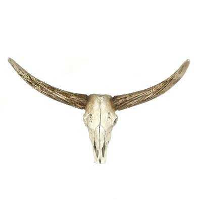 Steer Skull Wall Décor - AllModern