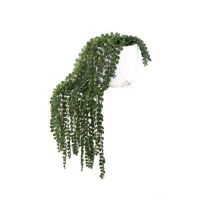 12.5'' Artificial Succulent Plant in Pot - Wayfair