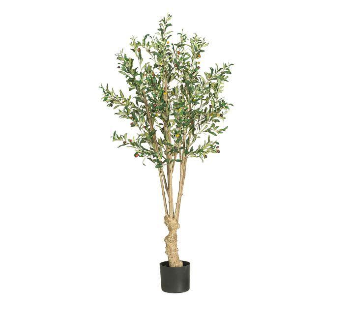 Faux Olive Tree, 5'