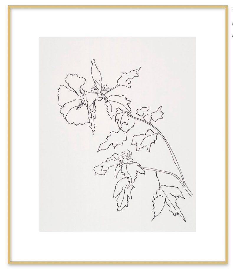 """Rose of Sharon Flower - 20""""x24"""""""