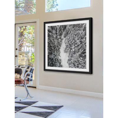 'Path Among Giants' - Framed Photographic Print