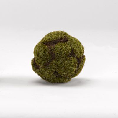 Crackled Moss Ball Plant (set of 3)