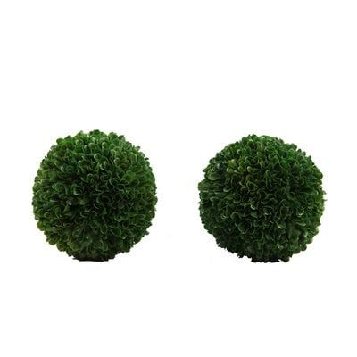 Faux Preserved Boxwood Plant