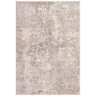 Brimstone Abstract Light Gray/Beige Area Rug