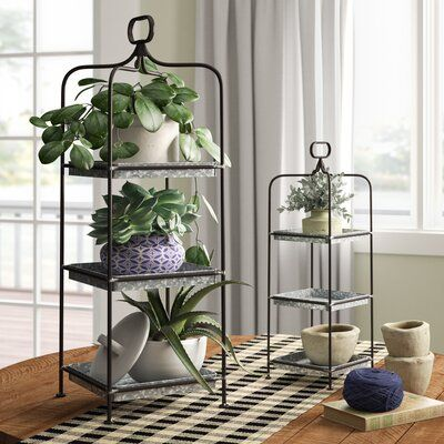 Kolten Multi-Tiered Plant Stand