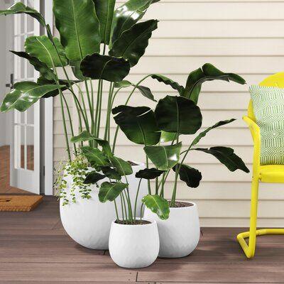 Halley 3-Piece Ceramic Pot Planter Set