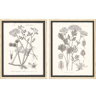 'Gray Botanicals I' - 2 Piece Picture Frame Graphic Art Set on Paper