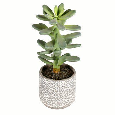 "11"" Artificial Succulent in Pot"